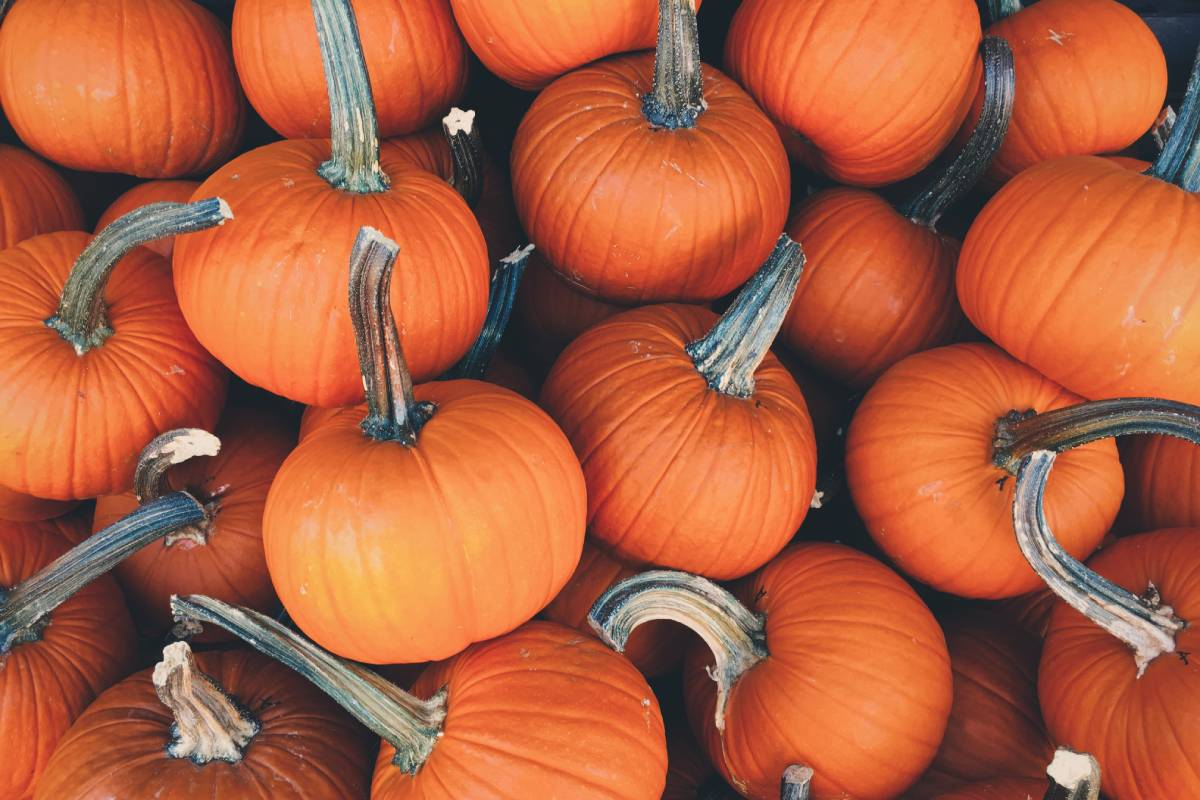 There are pumpkin carving activities among the Durham Halloween family events