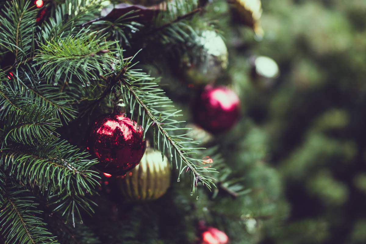 The Durham Cathedral Christmas tree will be lit on December 15