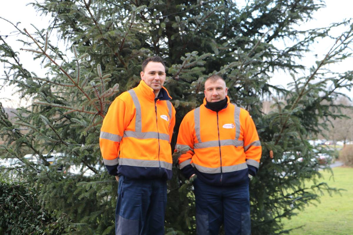 Christmas tree collection and recycling in Durham is available to book