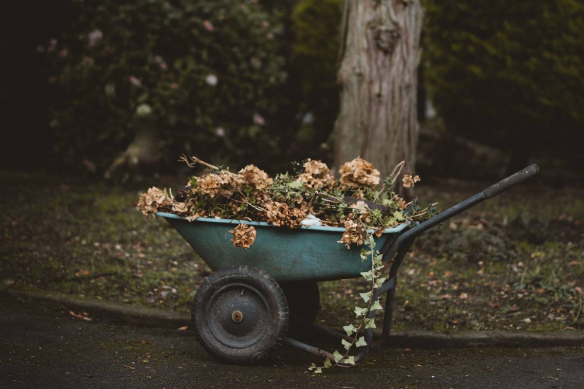 How to sign up for garden waste brown bin collection in Durham for 2020