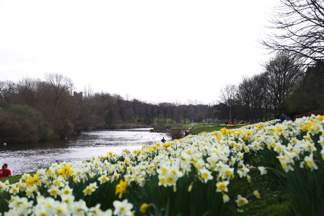 Five ways to enjoy the signs of spring in Durham this Easter 2019