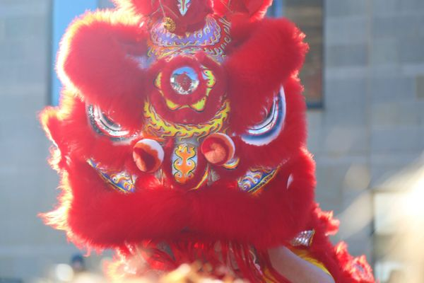 Durham Chinese New Year celebrations and lion dance in pictures