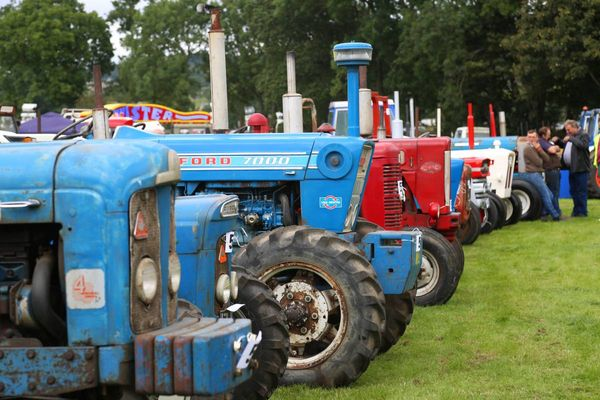 Eggleston Show 2019 date, schedule and ticket prices