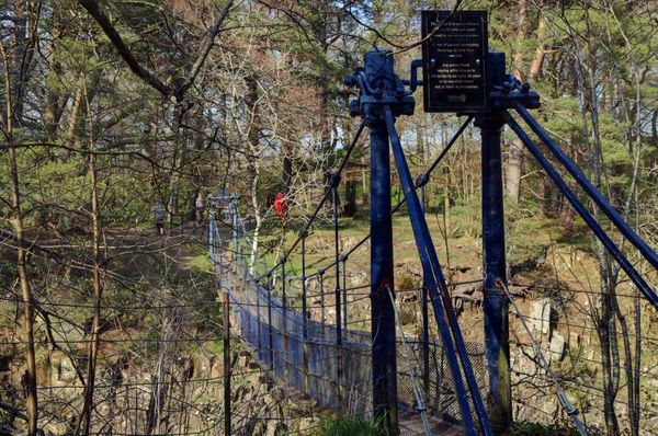 Teesdale Wynch Bridge closed for eight weeks during urgent repairs