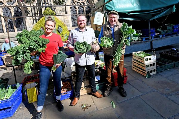 Join the Veg Cities campaign for food in Durham Marketplace